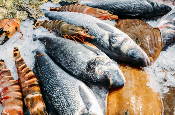High Angle Still Life of Variety of Raw Fresh Fish Chilling on Bed of Cold Ice in Seafood Market Stall stock photo
