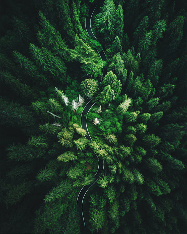 high angle view in Washington state
