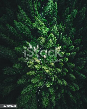 istock high angle view in washington state 1225505245