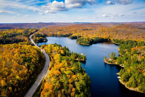 High angle view of a road in autumn stock photo