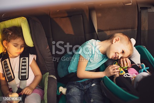 639770050 istock photo High angle view of kids traveling by car 1203780673