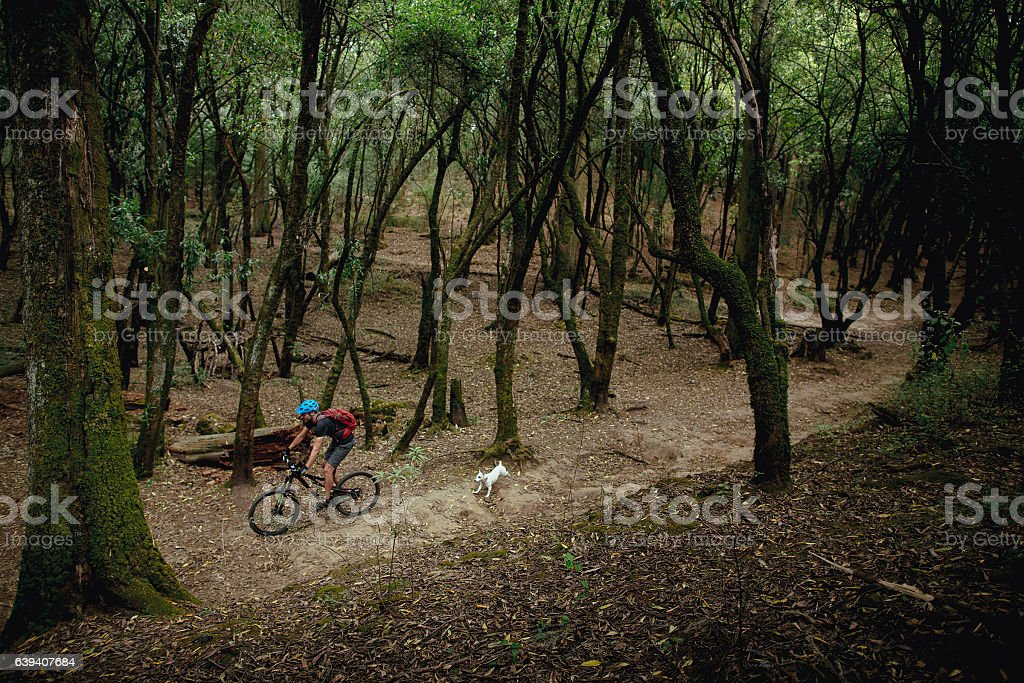 High angle view of latin man cycling with dog - foto de stock