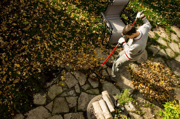 High Angle view of man raking autumn leaves and composting in garden conceptual fall home maintenance stock photo