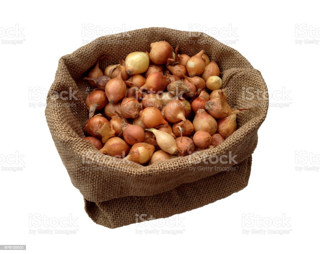 High angle view of onion seeds in a brown bag stock photo