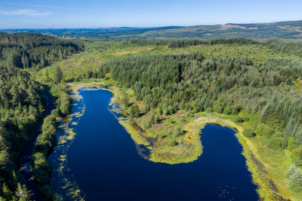 High angle view of part of a small Scottish loch in rural Dumfries and Galloway, south west Scotland An image captured by a drone of a small Scottish loch situated in a remote rural area surrounded by forest and uncultivated land. The location is in Dumfries and Galloway, south west Scotland. johnfscott stock pictures, royalty-free photos & images