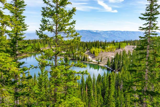 Opinião de ângulo elevado a floresta da árvore de pinho e a água alpina do lago da Cimeira de lagos de Thomas Hike em MT Sopris, Carbondale, Colorado - foto de acervo