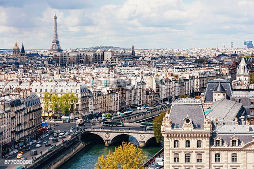 istock High angle view of Seine River with Eiffel Tower in the background 877030098