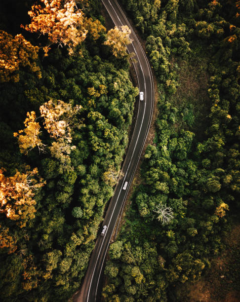 high angle view of the road in australia in autumn - queensland foto e immagini stock