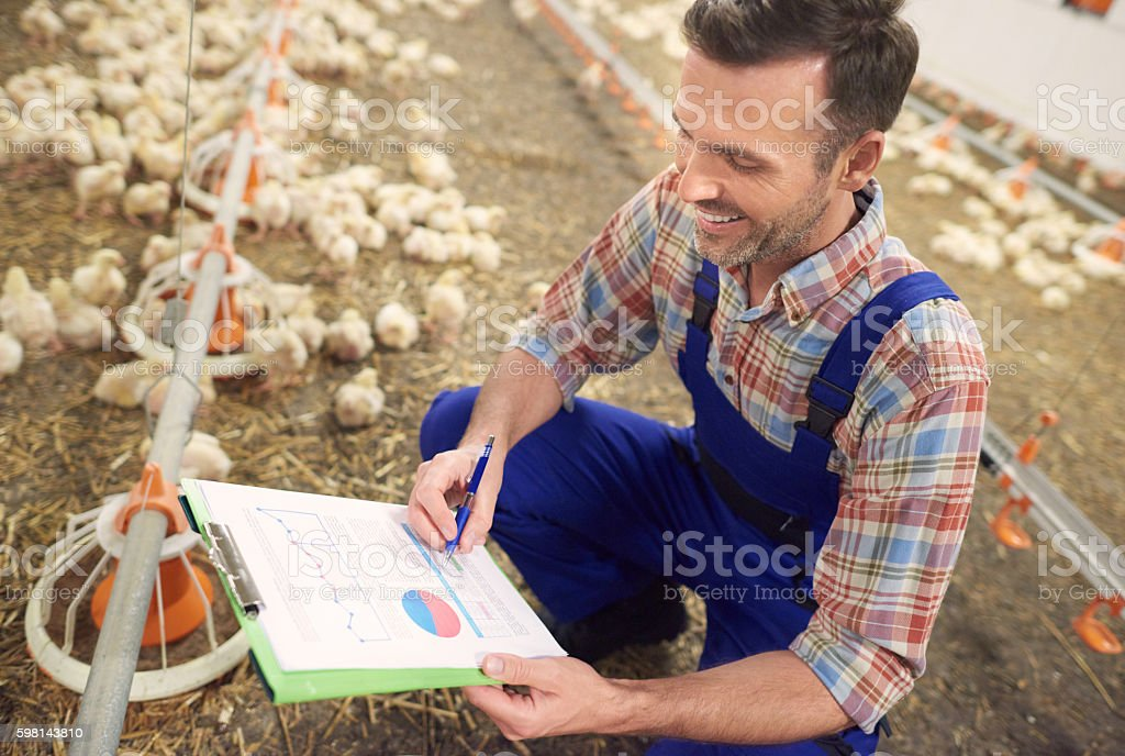 High angle view on busy farmer stock photo