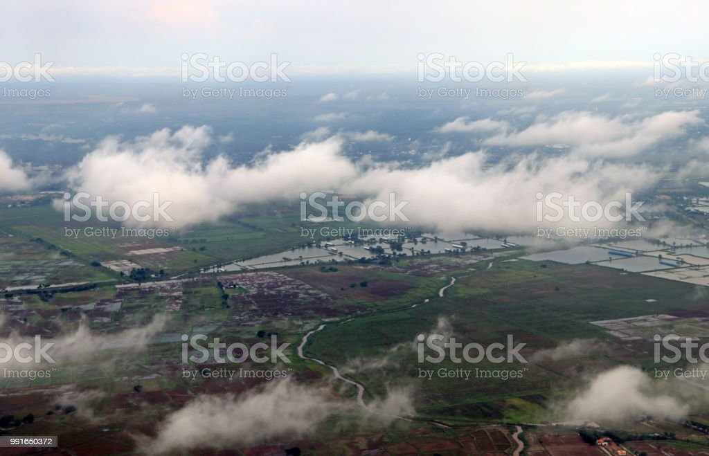 High angle view over the cloud of cornfield and green agricultural...