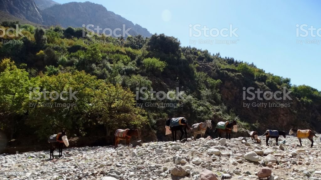 High Atlas mountains stock photo