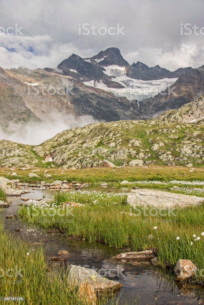 high bog on the Sustenpass stock photo