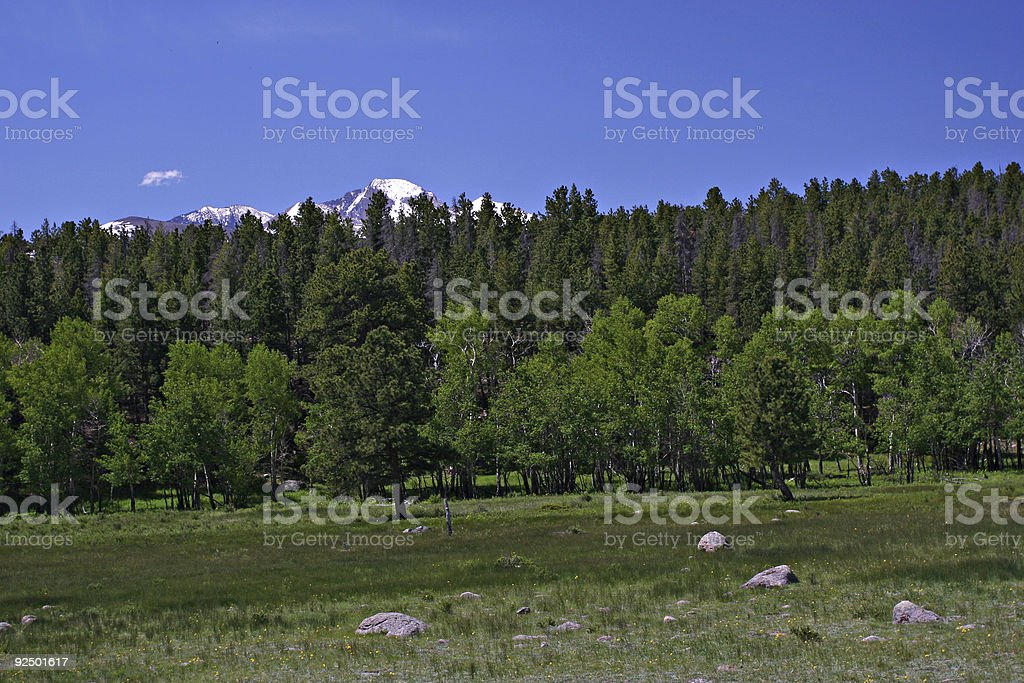 High Country royalty-free stock photo