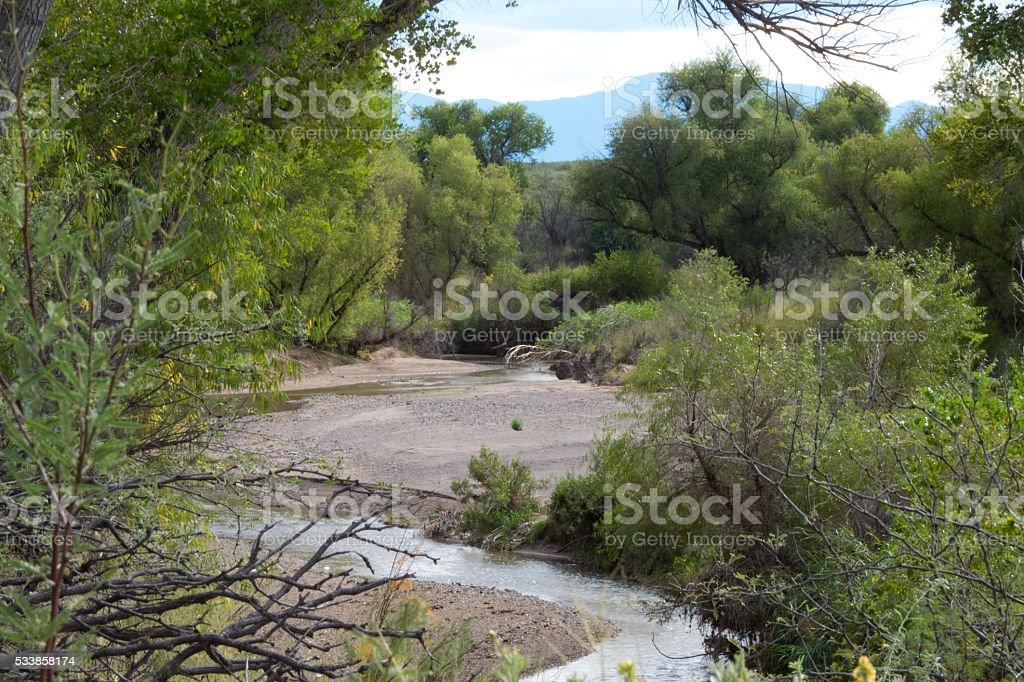 High Desert Oasis stock photo