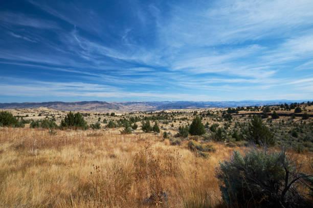 High Desert Vista stock photo
