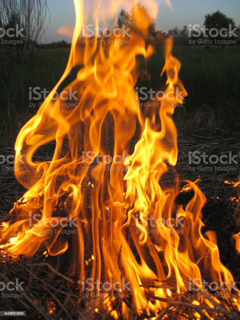 high fire in the darkness stock photo