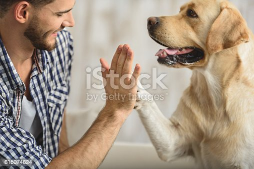 istock high five with dog and human 615074624