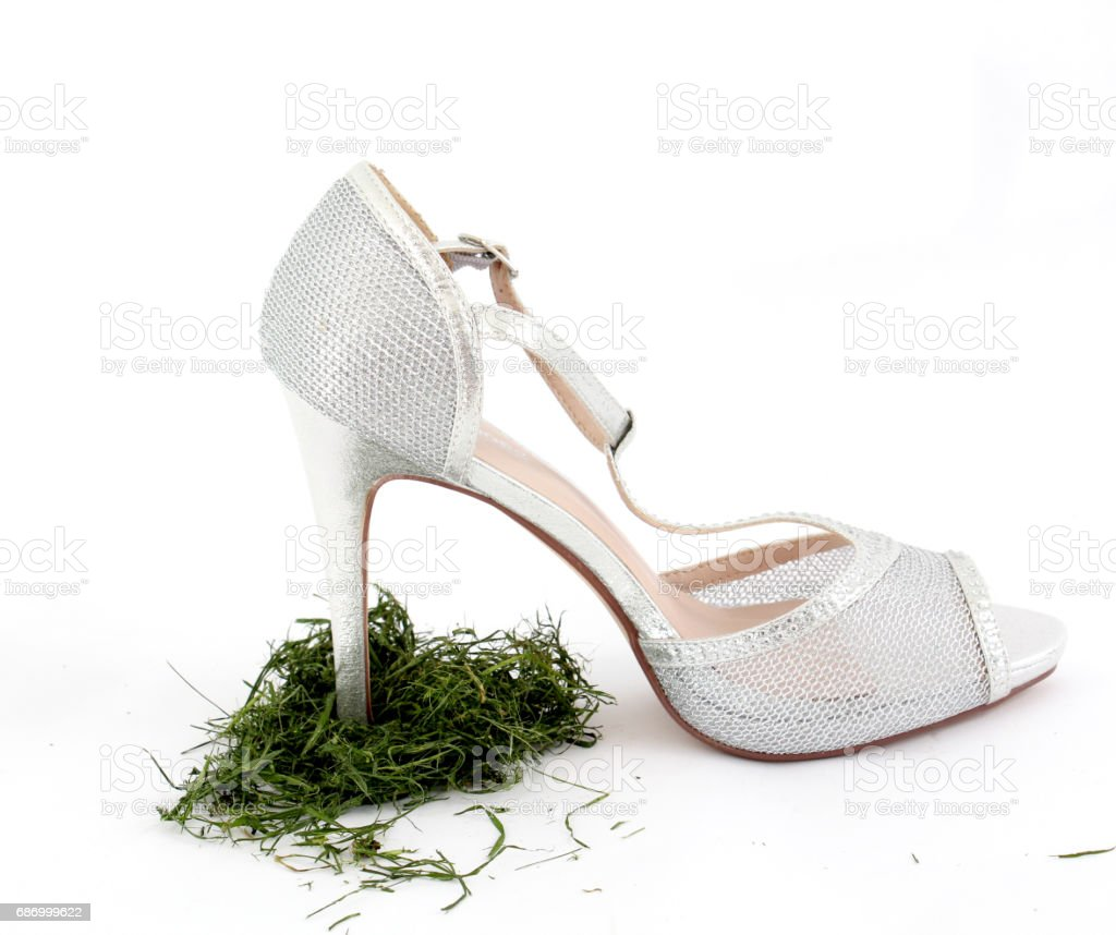 high heel women shoes on white background Lizenzfreies stock-foto
