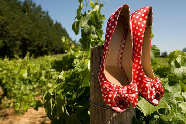 high heels mit punktmuster - robert weinberg stock-fotos und bilder