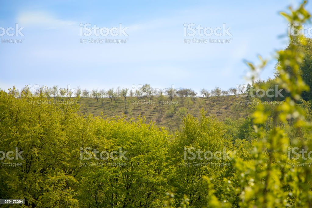 High hill 免版稅 stock photo