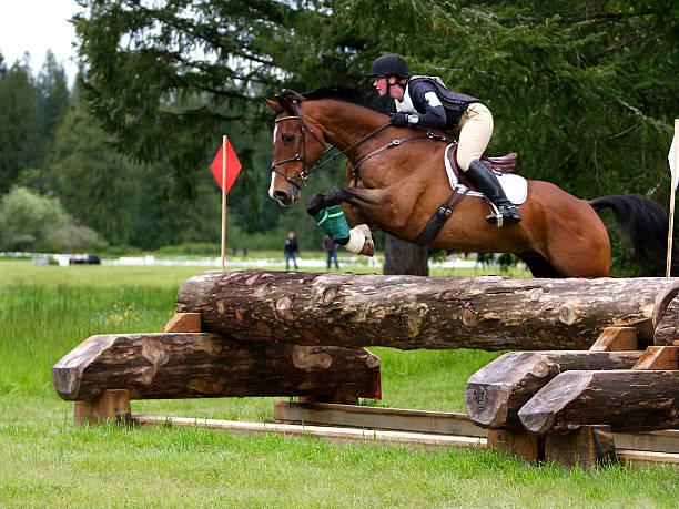 high level cross country - hästhoppning bildbanksfoton och bilder