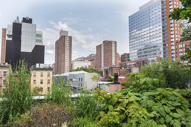 high line park in new york, usa - urbaner garten stock-fotos und bilder