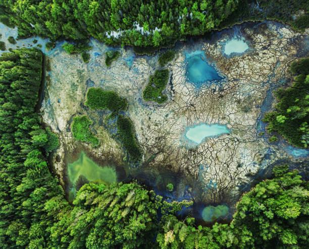 tereny podmokłe o wysokiej zawartości minerałów - minerał zdjęcia i obrazy z banku zdjęć
