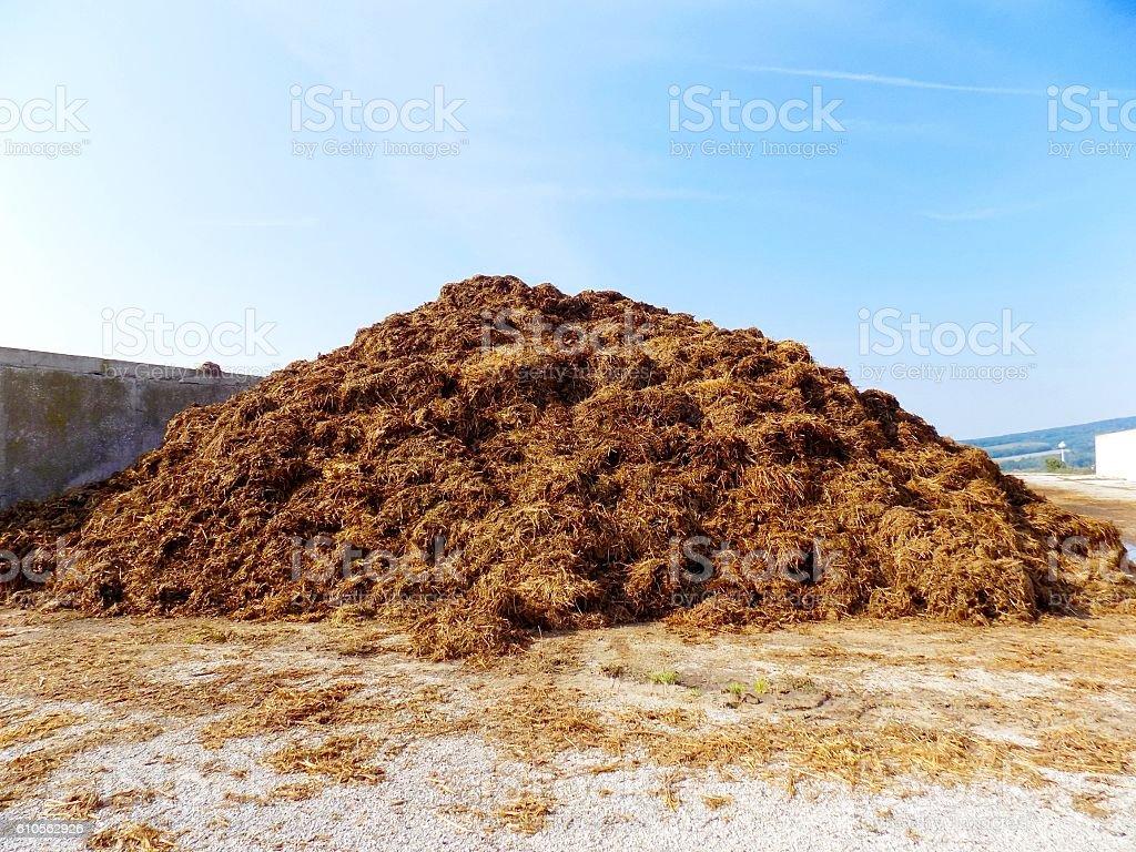 High pile of manure on farm stock photo