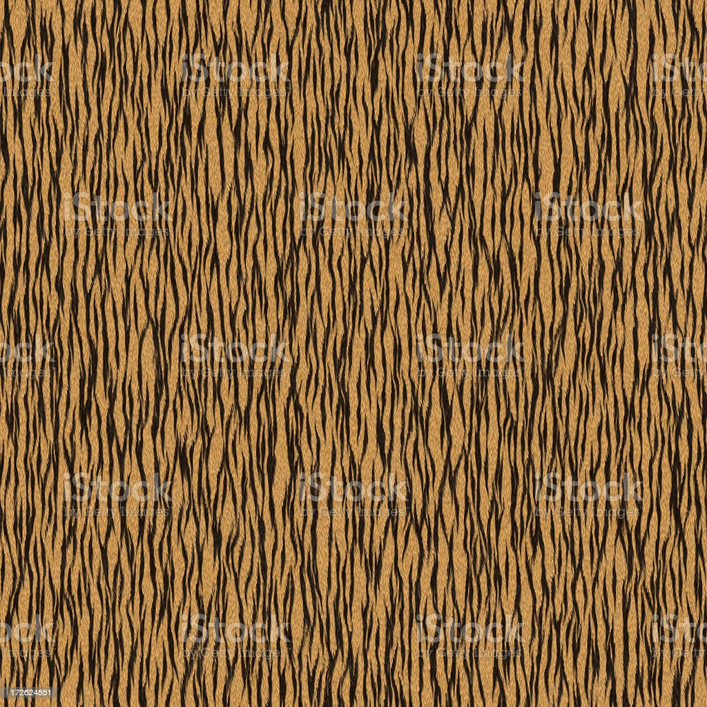 High Res Tiger Fur - Seamless stock photo
