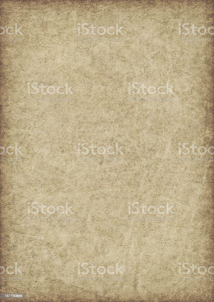 High Resolution Animal Skin Antique Parchment Vignette Grunge Texture royalty-free stock photo