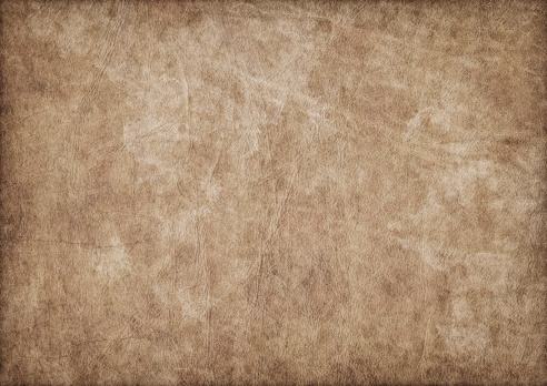 This Large, High Resolution Scan of Ancient Animal Skin Parchment, Crumpled Dappled, Blotted, Vignette Grunge Texture, is defined with exceptional details and richness, and represents the excellent choice for implementation within various CG Projects.