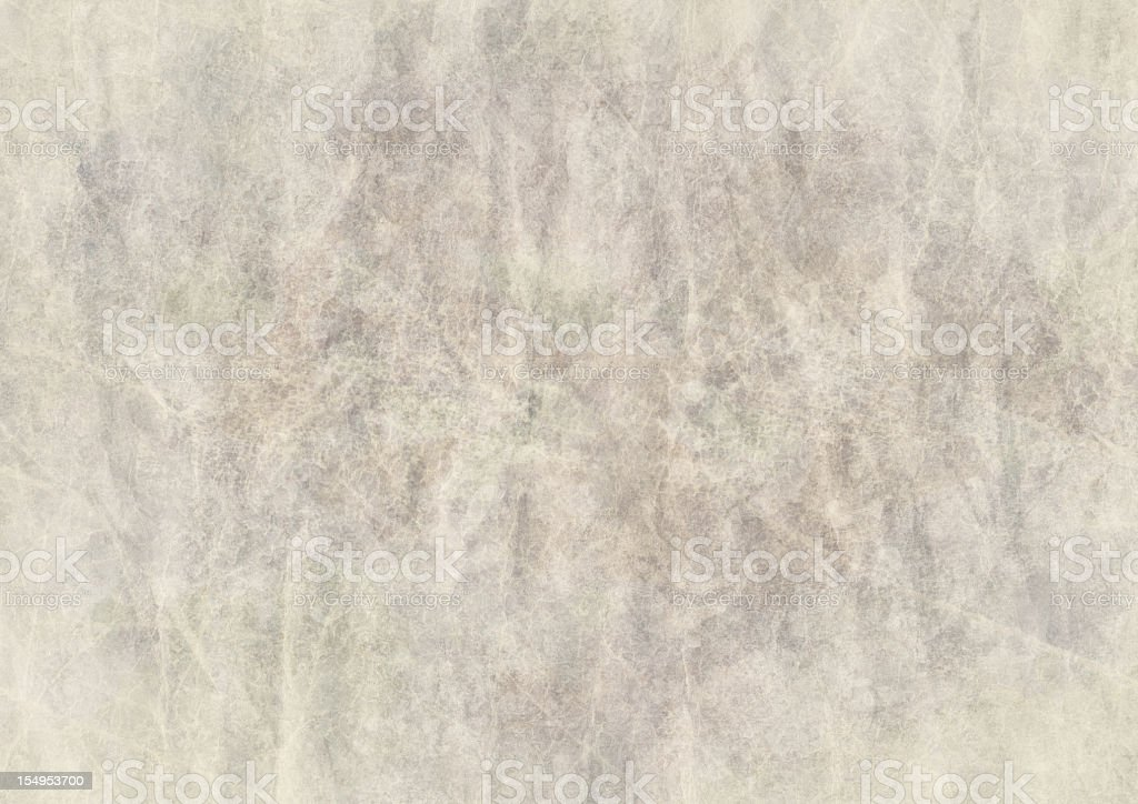High Resolution Animal Skin Old Parchment Grunge Texture stock photo