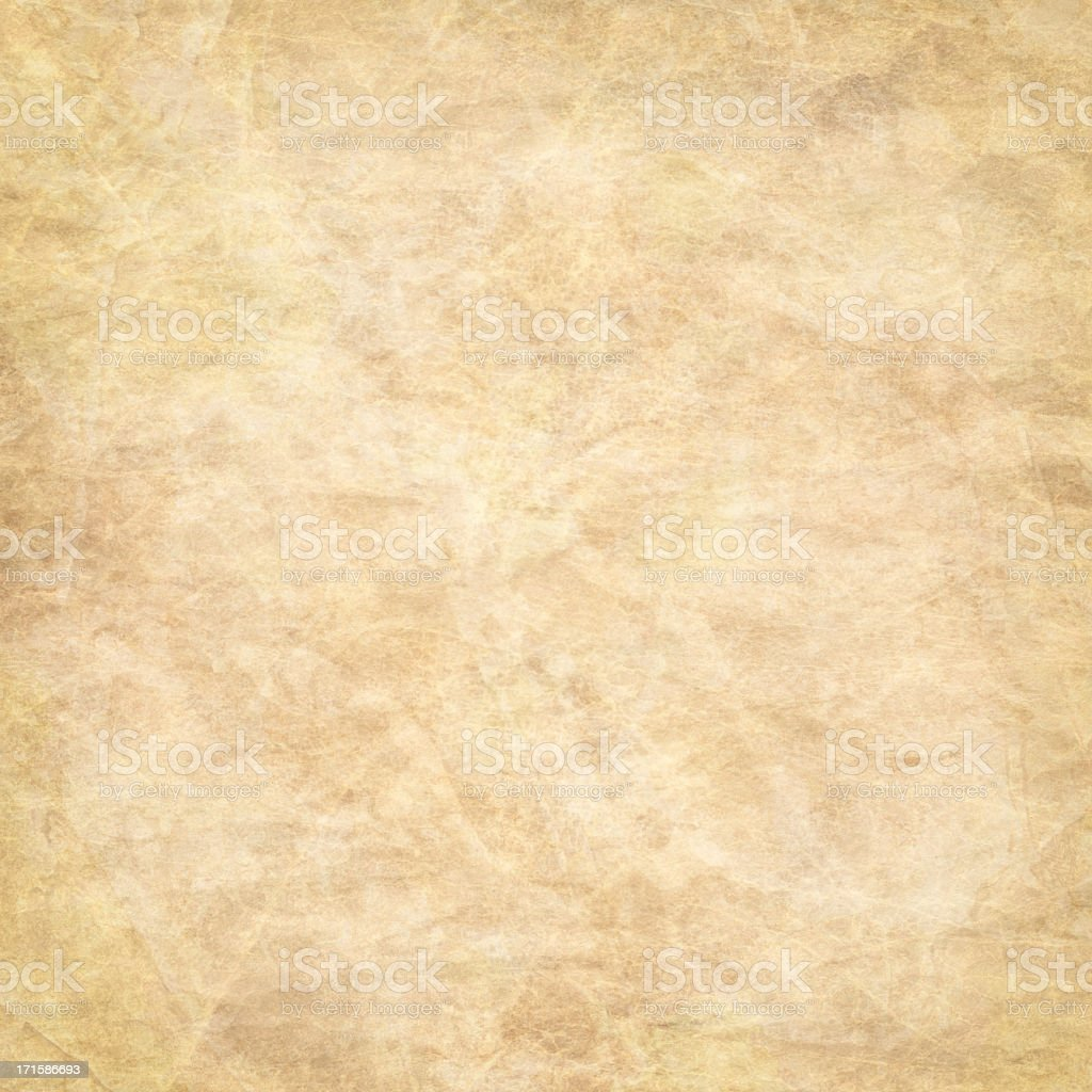 High Resolution Animal Skin Old Parchment Grunge Texture royalty-free stock photo