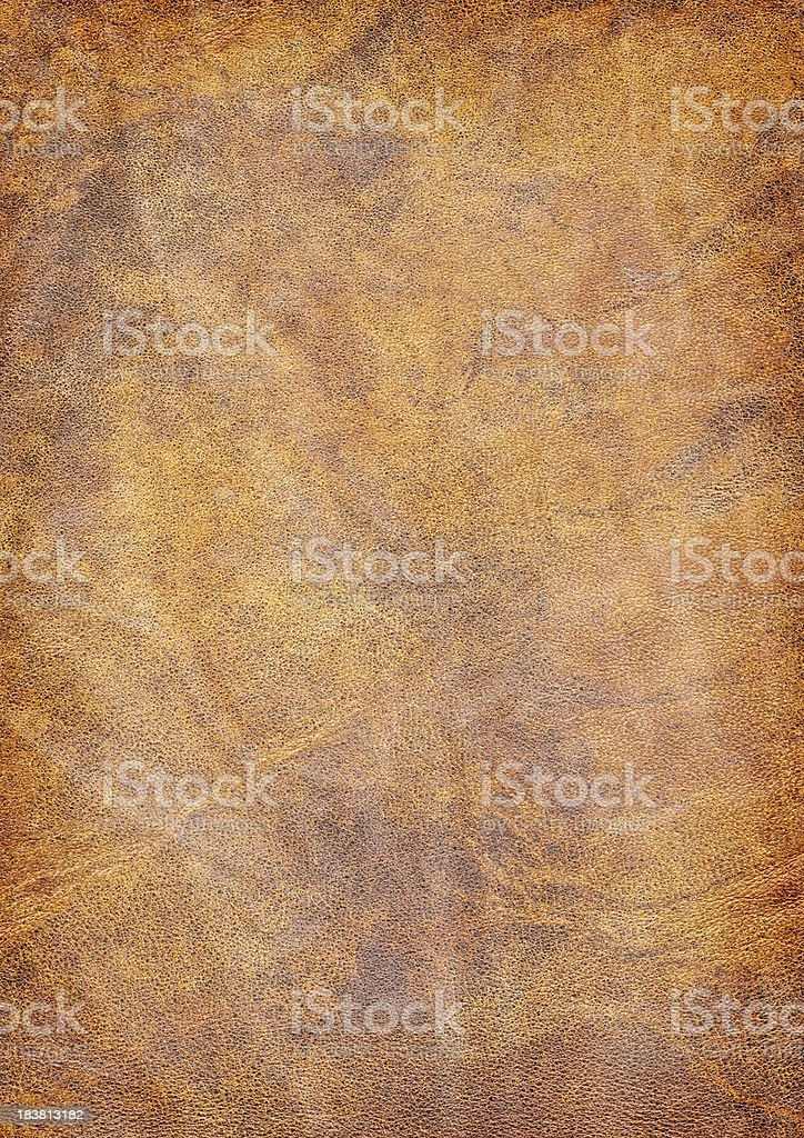 High Resolution Animal Skin Old Parchment Vignetted Grunge Texture royalty-free stock photo