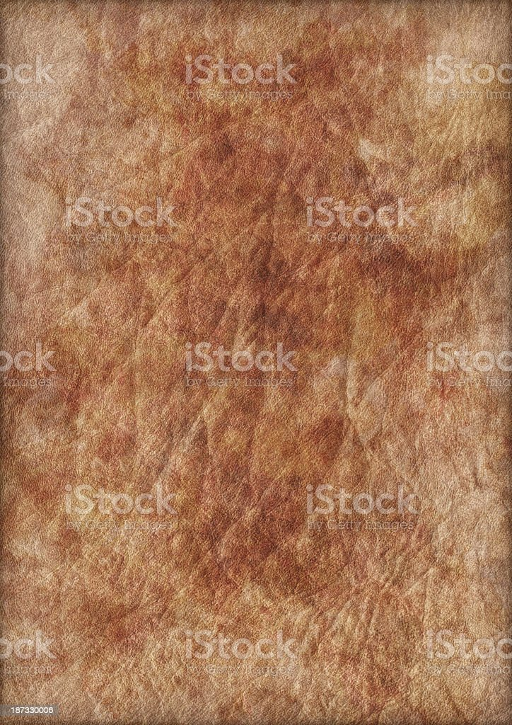 High Resolution Animal Skin Parchment Crumpled Mottled Vignette Grunge Texture royalty-free stock photo