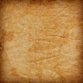 This Large, High Resolution Vivid Yellowish-brown Animal Skin Parchment, Wizened, Mottled, Vignette Grunge Texture, is defined with exceptional details and richness, and represents the excellent choice for implementation within various CG Projects.