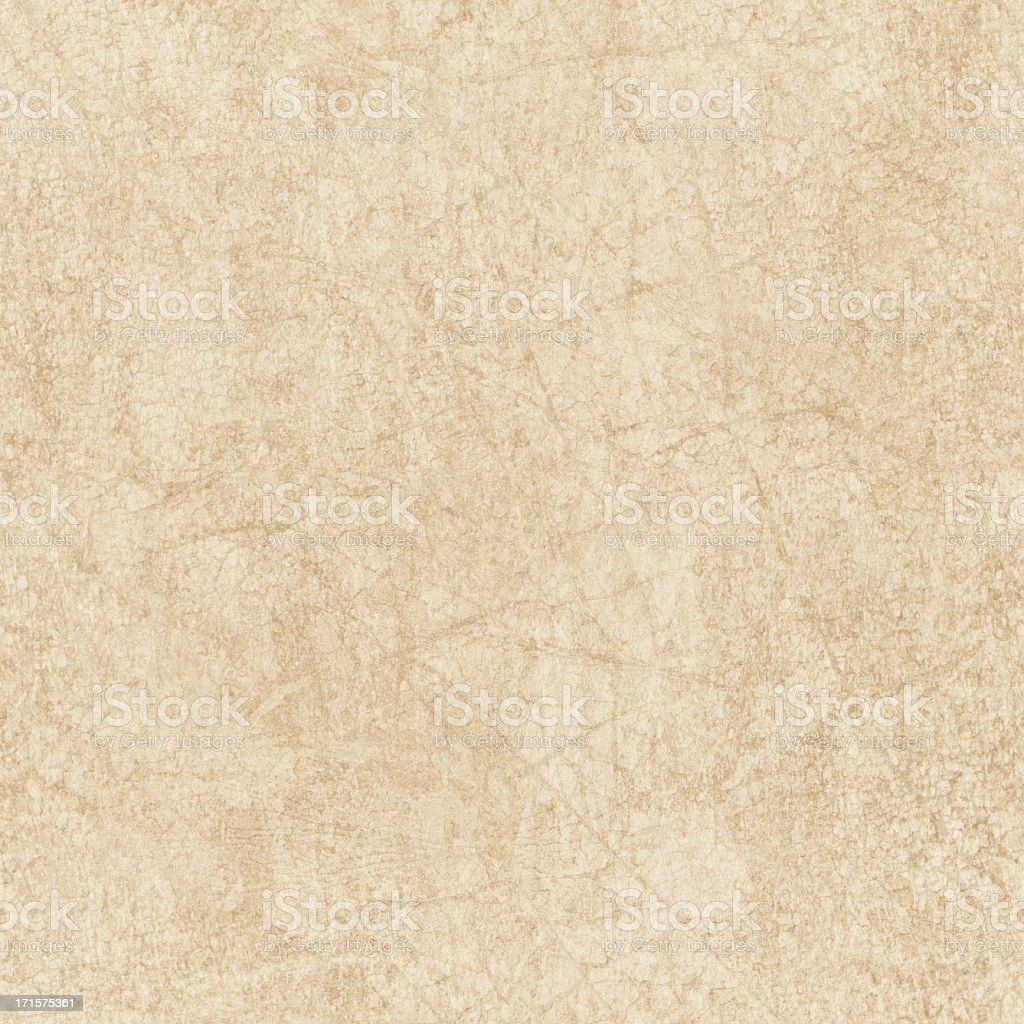 High Resolution Animal Skin Parchment (Vellum) Seamless Grunge Texture stock photo