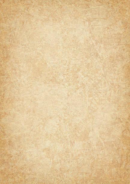 High Resolution Animal Skin Parchment (Vellum) Vignetted Grunge Texture stock photo