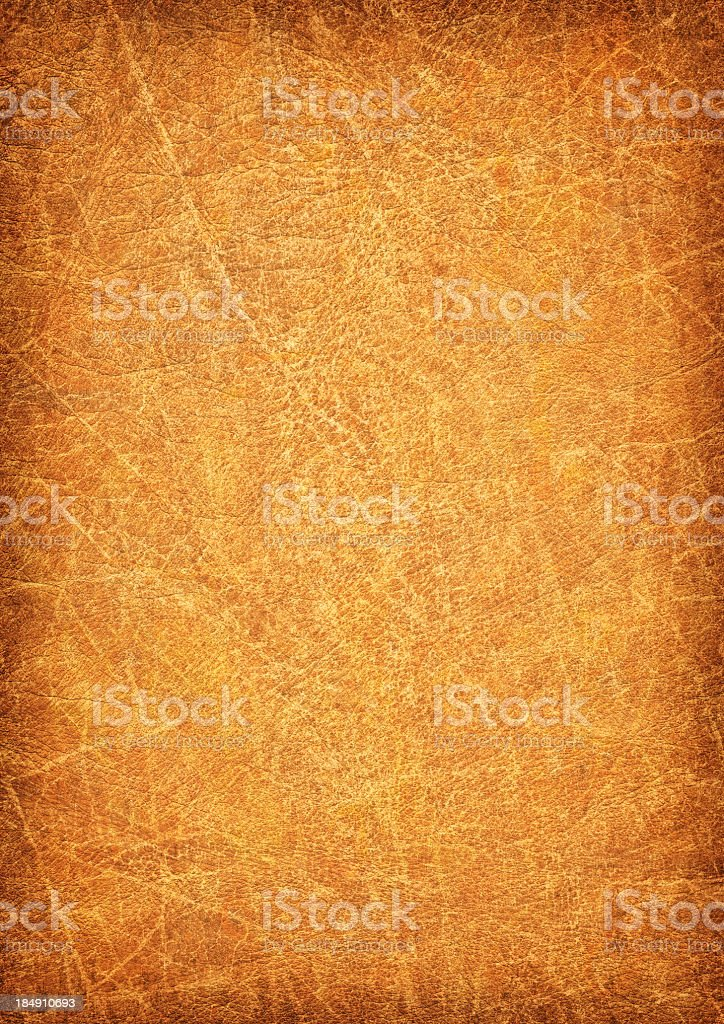 High Resolution Animal Skin Parchment Wizened Mottled Vignette Grunge Texture royalty-free stock photo