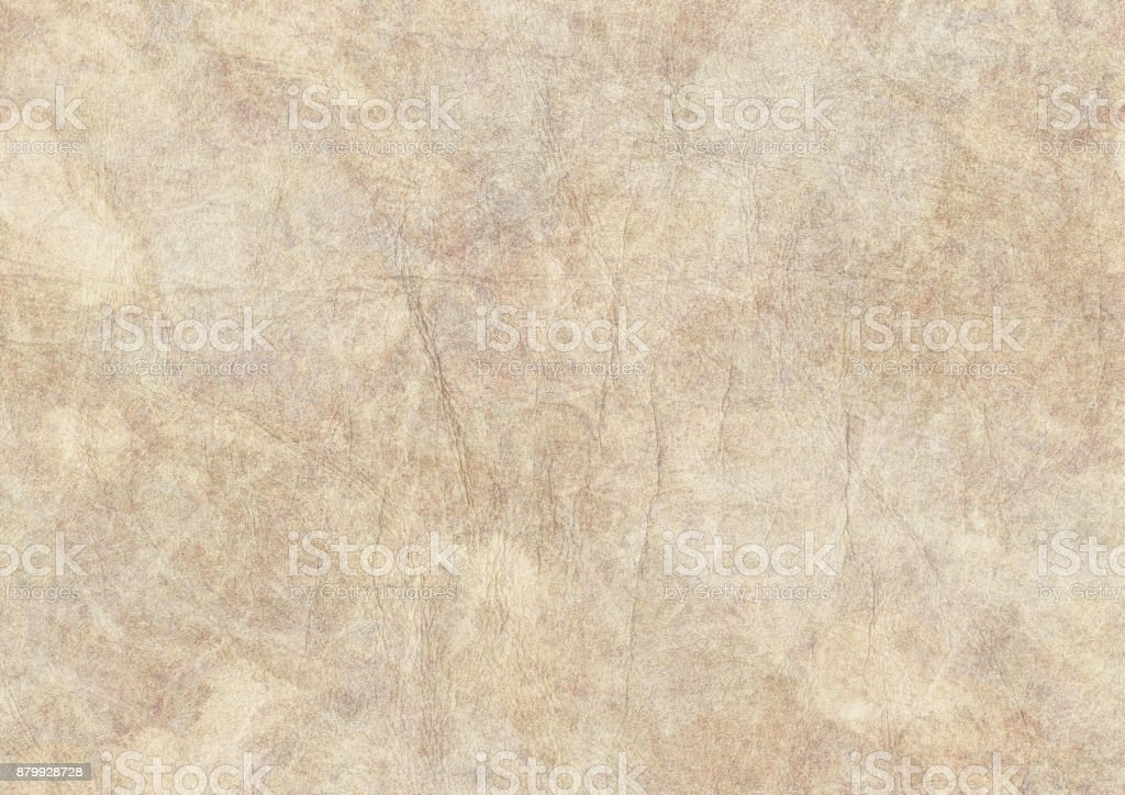 High Resolution Antique Animal Skin Parchment Coarse Wizened Grunge Texture stock photo