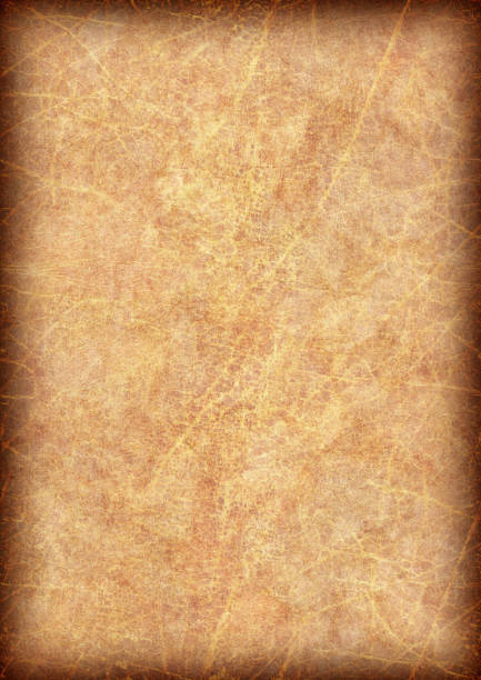 Very Royalty Free Abstract Burnt Parchment Paper Large Pictures, Images  GS43