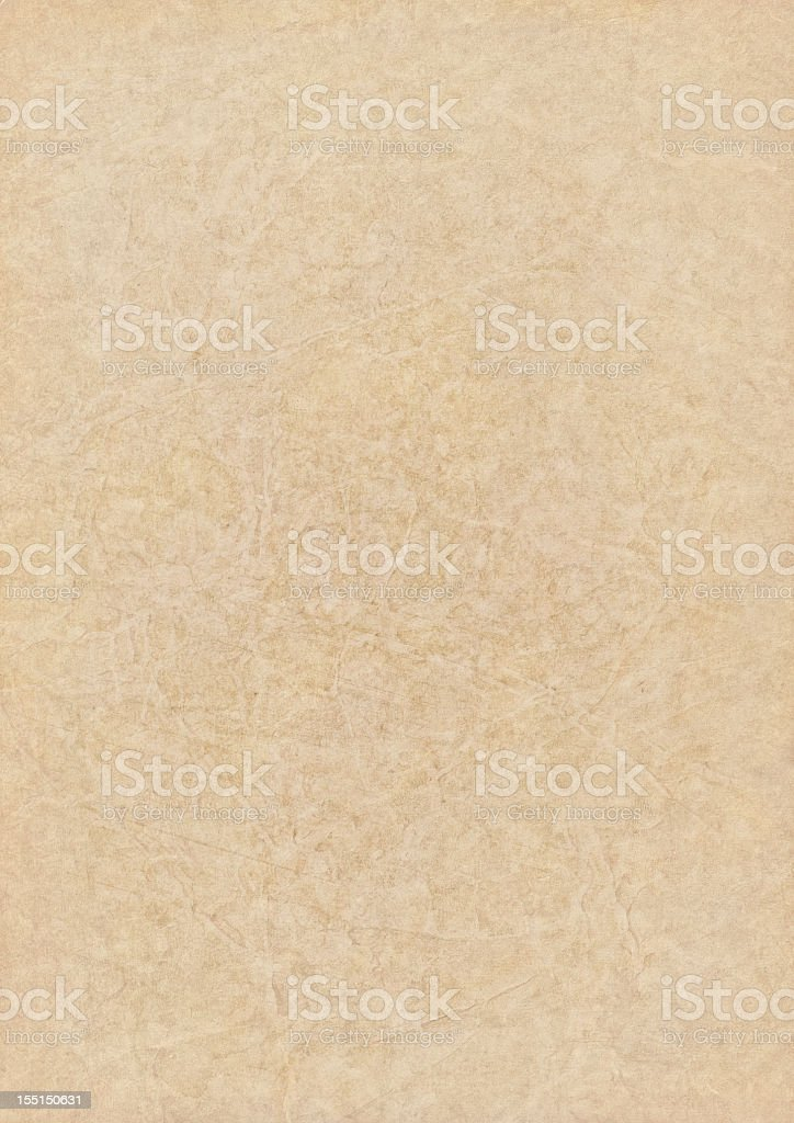 High Resolution Antique Animal Skin Parchment Grunge Texture royalty-free stock photo