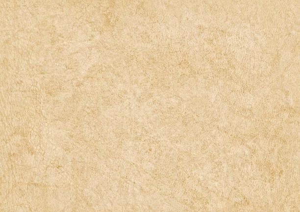 High Resolution Antique Animal Skin Parchment Grunge Texture stock photo