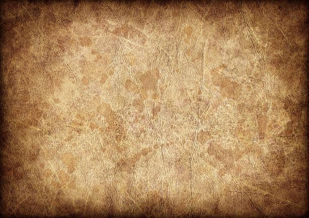 High Resolution Antique Animal Skin Parchment Vignette Grunge Texture stock photo
