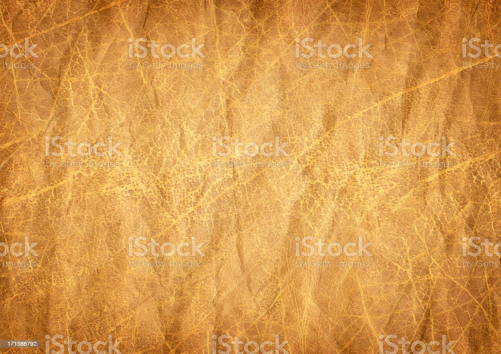 High Resolution Antique Animal Skin Parchment Vignetted Grunge Texture stock photo