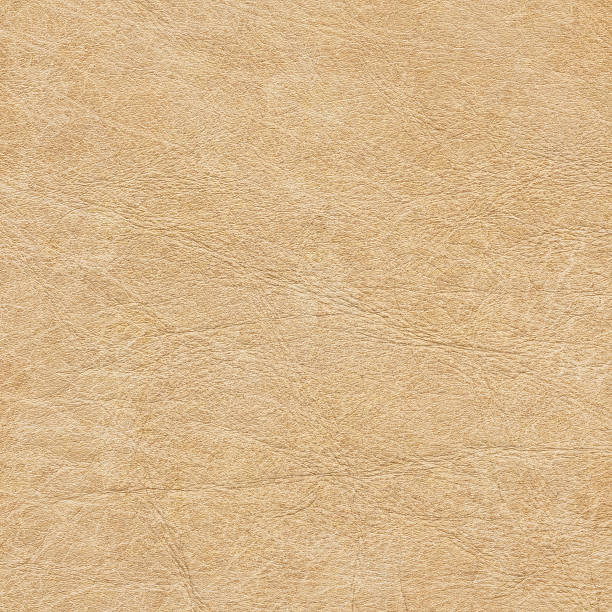 High Resolution Antique Parchment Grunge Texture stock photo
