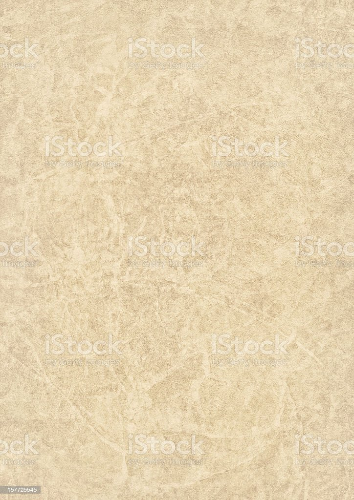 High Resolution Beige Antique Animal Skin Parchment Grunge Texture stock photo