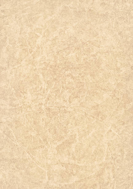high resolution beige antique animal skin parchment grunge texture - beige background stock photos and pictures