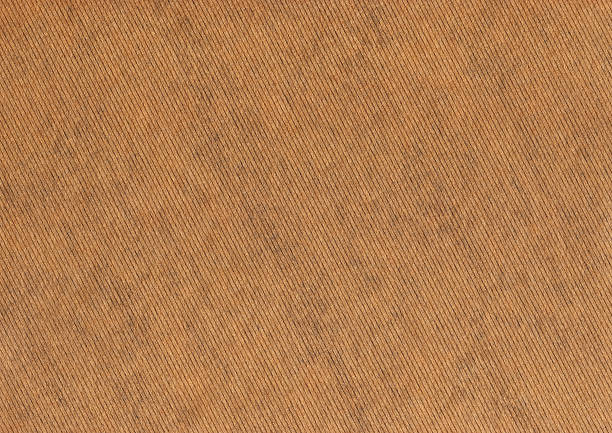 Royalty Free Brown Paper Bag Texture Pictures, Images And