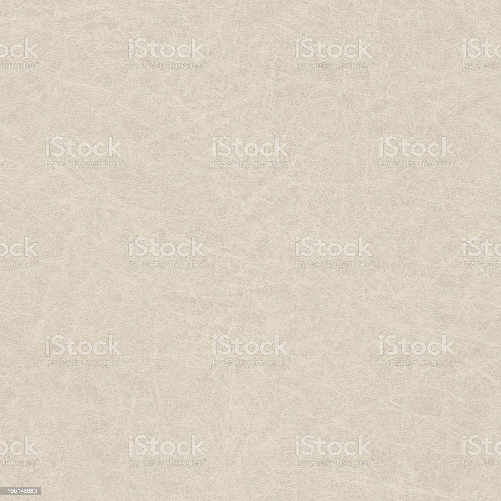 High Resolution Off White Antique Animal Skin Parchment Grunge Texture stock photo